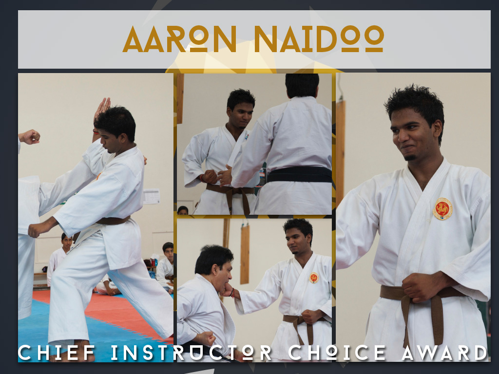 Chief Instructor Award 2014